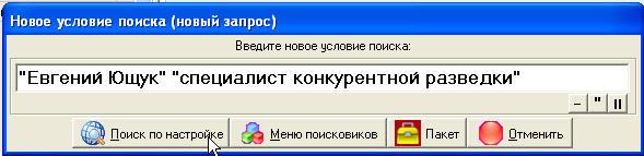 Окно с введенным запросом в SiteSputnik